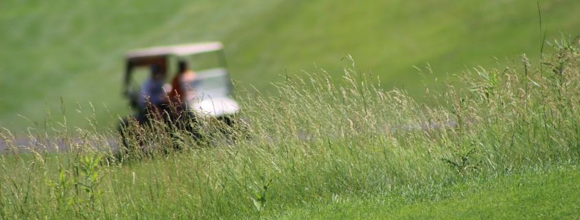 Golf cart driving blurred